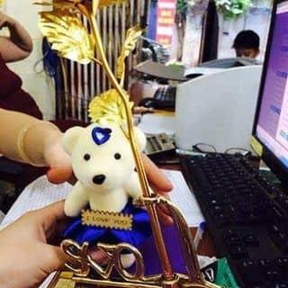 Hoa hồng vàng của justinchi tại Hà Nội - 1038829