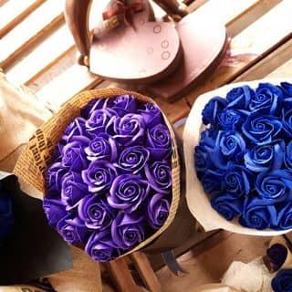 hoa sáp ............. của vuthanhthuy911990 tại Hà Nội - 1434067