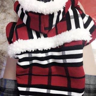 áo cho cún của linhchipandatao tại Hà Nội - 1808036