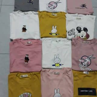 Áo phông quảng châu đẹp giá rẻ của namlundidong1593 tại Hà Nội - 2901448
