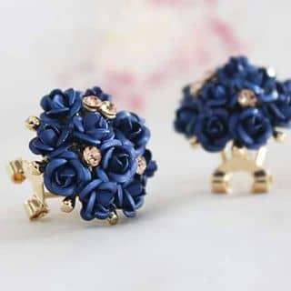 Bông hồng xanh của chaungocchau tại Hà Nội - 1212011