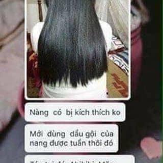 Dầu cặp dưỡng tóc pizu của nhiinhonhooc tại Hà Nội - 3197472