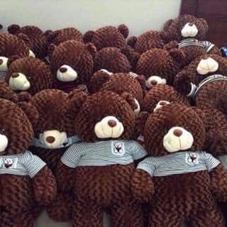 Gấu bông giá rẻ chất lượng của trannguyenthuhoai tại Hà Nội - 1873944