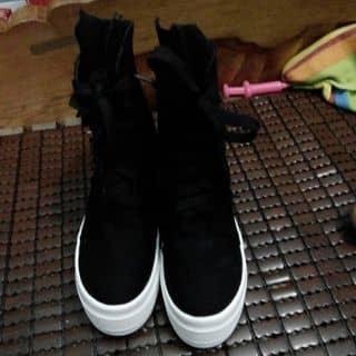 giày của messengerquatrian tại Hà Nội - 2724624