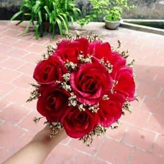 Hoa giấy handmade của maybe2601 tại Hà Nội - 2098727