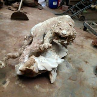 Hoang sư hổ.. của tuonggophongthuy tại Hà Nội - 1444323