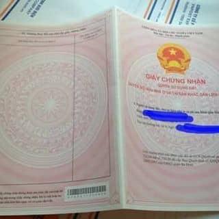 Nhận làm văn bằng, chứng chỉ và tất cả các loại giấy tờ khác của khuuhaihiep1955 tại Hà Nội - 2910210