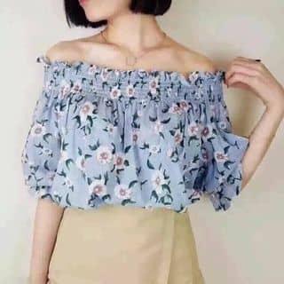 Pass áo của chichii16 tại Hà Nội - 3162185