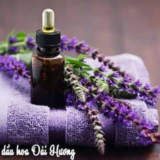 Tinh dầu oải hương - Lavender Grosso của evaevashop tại Hà Nội - 2768634