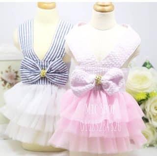 Váy xoè cho thú cưng của bechuoi tại Hà Nội - 2897665