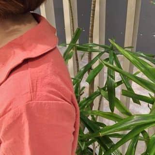 zoom kĩ em áo cổ sen này luôn nè chỉ 150k ạ của besieunhanbungmo tại Hà Nội - 3213486